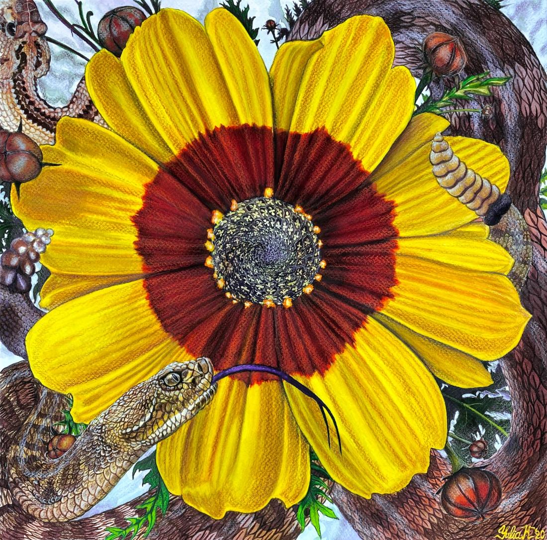 Flower Serpent Composition #2